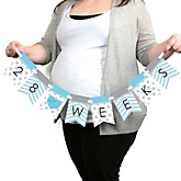 Chevron Blue - Pregnancy Weekly Photo Garland Banner - Maternity Weekly Photo Prop