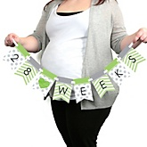 Chevron Green - Pregnancy Weekly Photo Garland Banner - Maternity Weekly Photo Prop