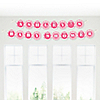 Chevron Pink - Personalized Baby Shower Garland Letter Banners