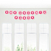 Chevron Pink - Personalized Everyday Party Garland Letter Banner