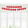 Chevron Red - Personalized Birthday Party Garland Letter Banner