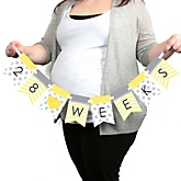 Chevron Yellow - Pregnancy Weekly Photo Garland Banner - Maternity Weekly Photo Prop