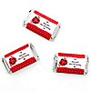 Modern Ladybug - Personalized Birthday Party Mini Candy Bar Wrapper Favors - 20 ct