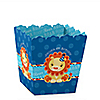 Lion Boy - Personalized Birthday Party Candy Boxes