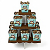 Owl - Look Whooo's Having a Birthday - Birthday Party Candy Stand and 13 Candy Boxes