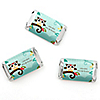 Owl - Look Whooo's Having A Birthday - Personalized Birthday Party Mini Candy Bar Wrapper Favors - 20 ct