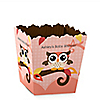 Owl Girl - Look Whooo's Having A Baby - Personalized Baby Shower Candy Boxes