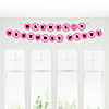 Pink Zebra - Personalized Birthday Party Garland Letter Banner