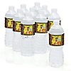 Funfari™ - Fun Safari Jungle - Personalized Baby Shower Water Bottle Label Favors