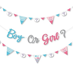 Chevron Gender Reveal - Gender Reveal Letter Banner Decoration - 36 Banner Cutouts and Boy Or Girl? Banner Letters