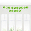Chevron Green - Personalized Everyday Party Garland Letter Banner