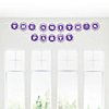 Chevron Purple - Personalized Everyday Party Garland Letter Banner