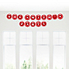 Chevron Red - Personalized Everyday Party Garland Letter Banner