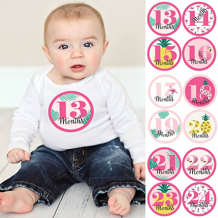 Baby Girl Second Year Monthly Sticker Set - Pink Flamingo - Party Like a Pineapple - Baby Shower Gift Ideas -  13 - 24 Months Stickers