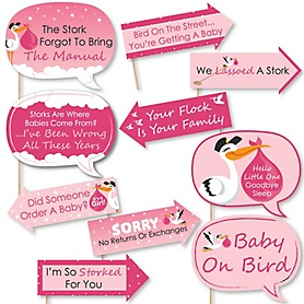 Funny Girl Special Delivery - 10 Piece Pink Stork Baby Shower Photo Booth Props Kit