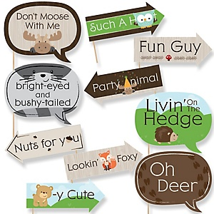 Woodland Creatures Baby Shower Decorations Theme