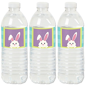 Hippity Hoppity - Easter Bunny Easter Party Water Bottle Sticker Labels - Set of 20