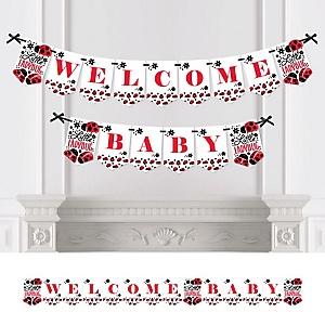 Modern Ladybug  - Personalized Baby Shower Bunting Banner
