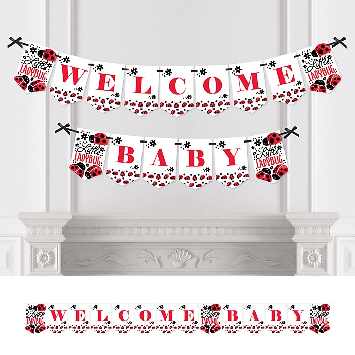 Happy Little Ladybug - Personalized Baby Shower Bunting Banner & Decorations