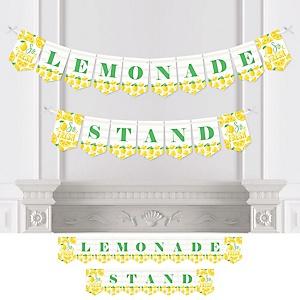 So Fresh - Lemon - Citrus Lemonade Party Bunting Banner - Party Decorations - Lemonade Stand