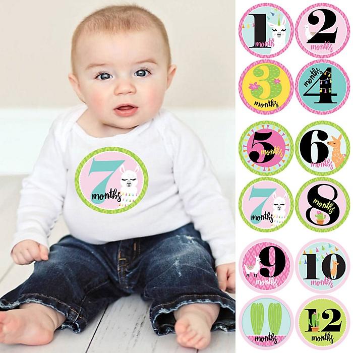 Baby Girl Monthly Sticker Set - Whole Llama Fun - Baby Shower Gift Ideas - 12 Piece