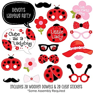 Modern Ladybug - 20 Piece Baby Shower or Birthday Party Photo Booth Props Kit
