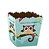 Owl - Look Whooo's Having A Baby - Party Mini Favor Boxes - Personalized Baby Shower Treat Candy Boxes - Set of 12