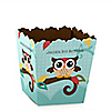 Owl - Look Whooo's Having A Birthday - Personalized Birthday Party Candy Boxes