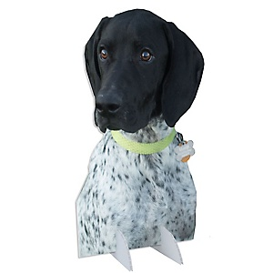 Pet Photo Cutout Stand - Custom Picture Cut Out Party Decorations - Upload 1 Photo - Photo Stand - 1 Piece