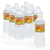 Pumpkin Patch - Personalized Fall & Thanksgiving Party Water Bottle Sticker Labels - Set of 10
