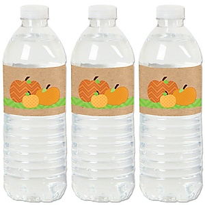 Pumpkin Patch - Fall & Thanksgiving Party Water Bottle Sticker Labels - Set of 20