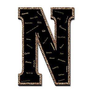 "Signature Letter N - Guest Book Sign Letter - 21"" Foam Board Party Guestbook Alternative 