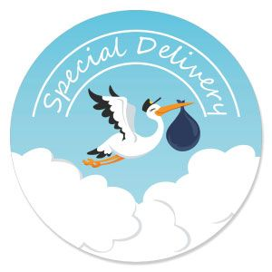 Boy Special Delivery   Blue Stork Baby Shower Theme