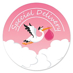 Girl Special Delivery - Pink Stork Baby Shower Theme