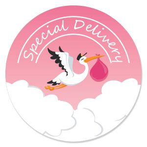Girl Special Delivery   Pink Stork Baby Shower Theme