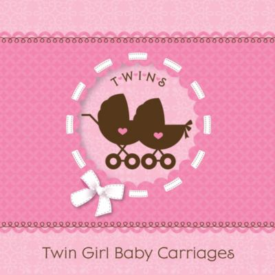 Twin Girl Baby Carriages   Baby Shower Theme