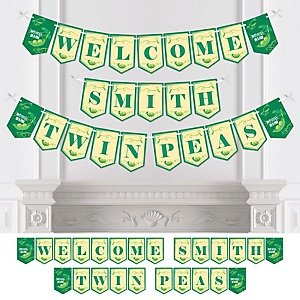 Double the Fun - Twins Two Peas In A Pod - Personalized Baby Shower or First Birthday Party Bunting Banner & Decorations
