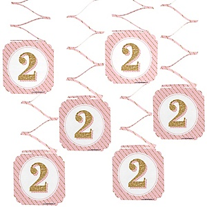 Two Much Fun - Girl - 2nd Birthday Party Hanging Decorations - 6 ct